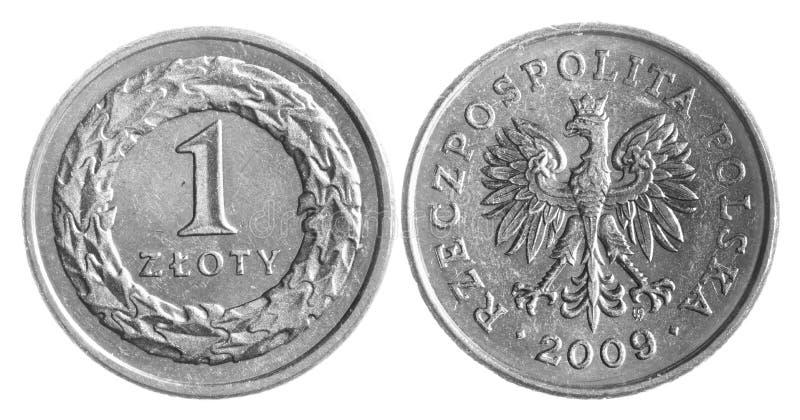 polerad zloty royaltyfri foto