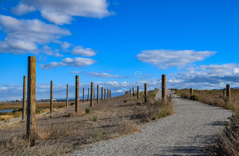 The `Poles` at Baylands Reserve. These poles were placed as artwork at Baylands Reserve in Palo Alto, California royalty free stock images