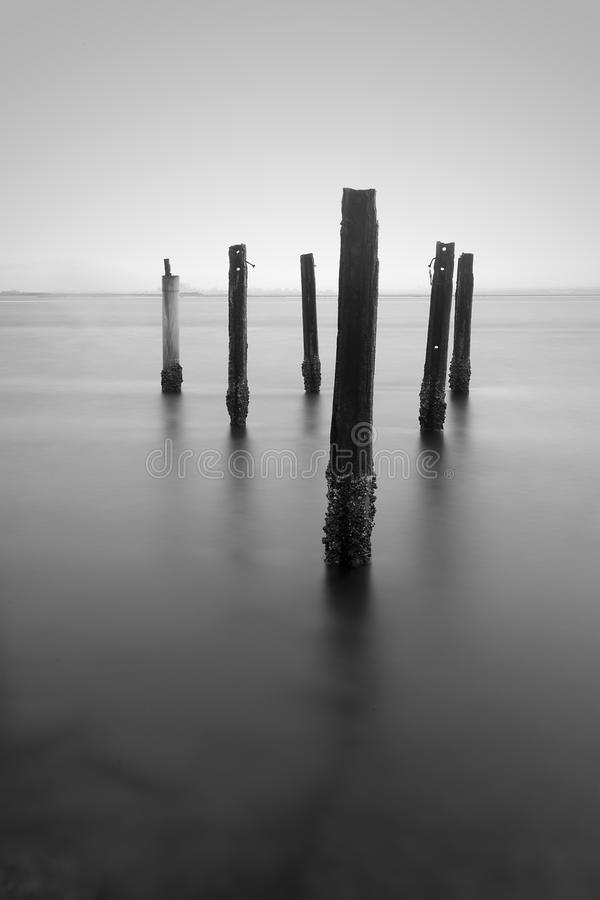 Poles of a broken wooden jetty stock photo
