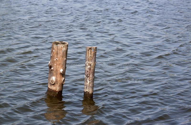 Poles on the lake - RAW format. Two wooden poles on the lake royalty free stock photo