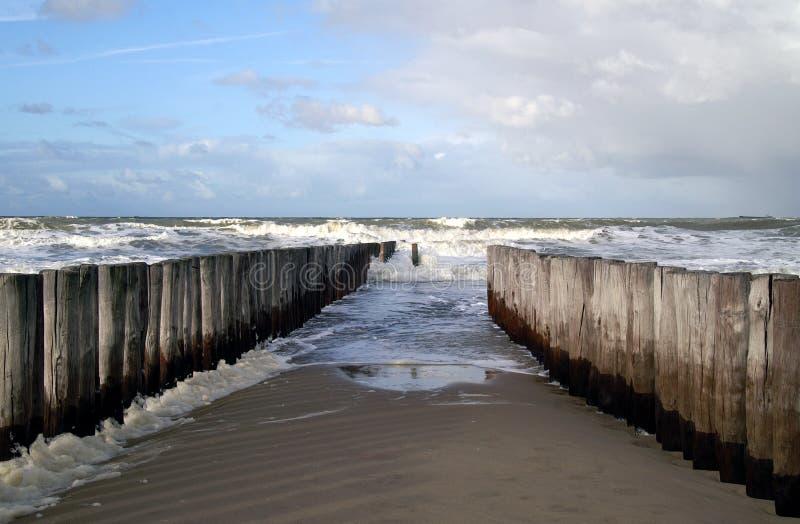 Poles in the sea stock photo