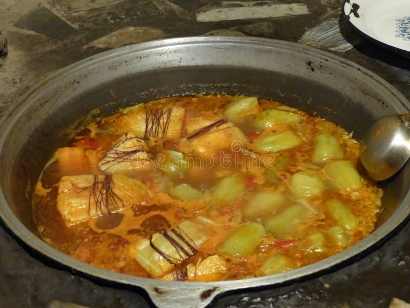 Polewka z jasnymi zielonymi małymi pieprzami i warzywami w garnku bezpośrednio na ogieniu Uzbekistan jedzenie zdjęcie stock