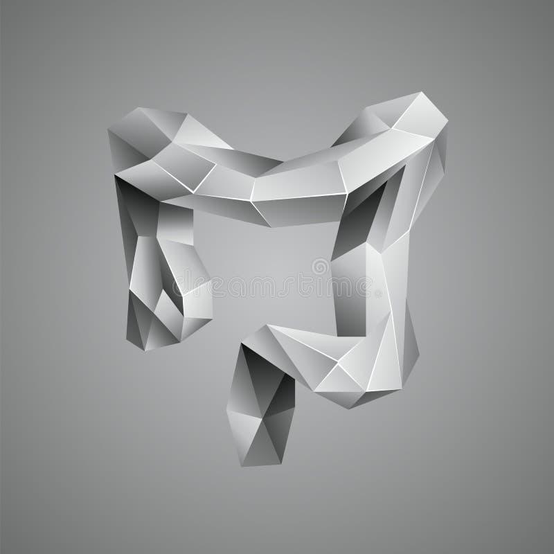 Poli due punti umani bassi grigi Organo astratto di anatomia Intestino crasso nello stile del poligono 3D illustrazione vettoriale