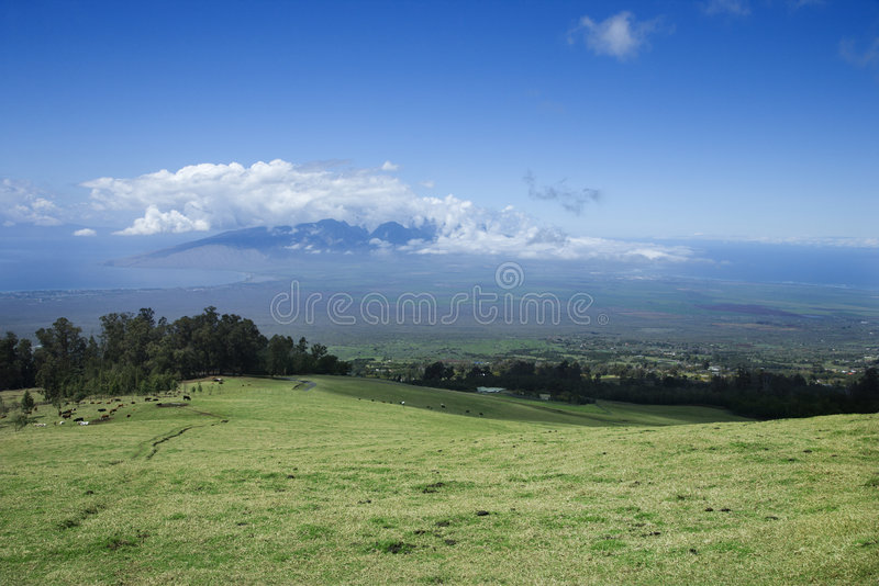 Poli-Poli, Maui Upcountry. foto de stock royalty free