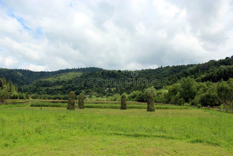 Polias do feno que estão em montanhas Carpathian fotos de stock royalty free