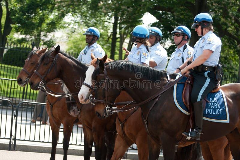 Policía a caballo en la casa blanca foto de archivo libre de regalías