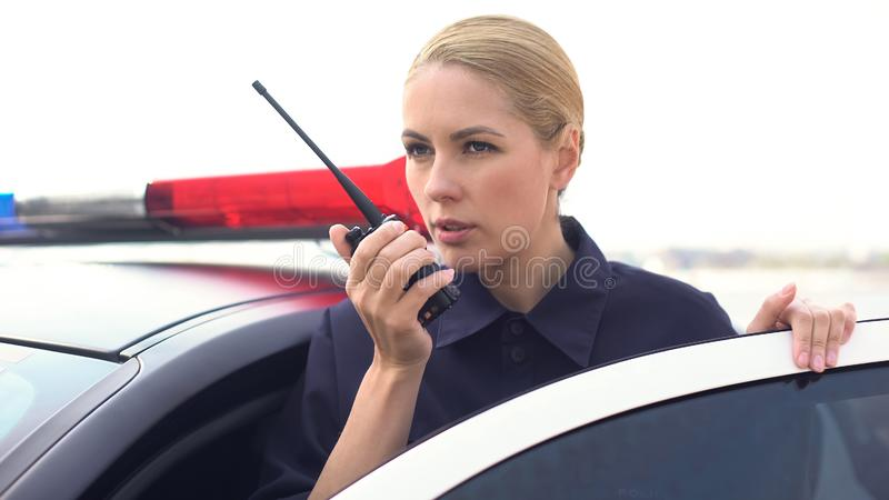 Policía confiada que consigue la información sobre el sistema de radio, patrullando seguridad en carretera imagenes de archivo
