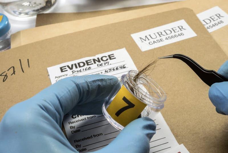 Policía especializada que toma los pelos de las demostraciones para analizar en laboratorio científico imágenes de archivo libres de regalías