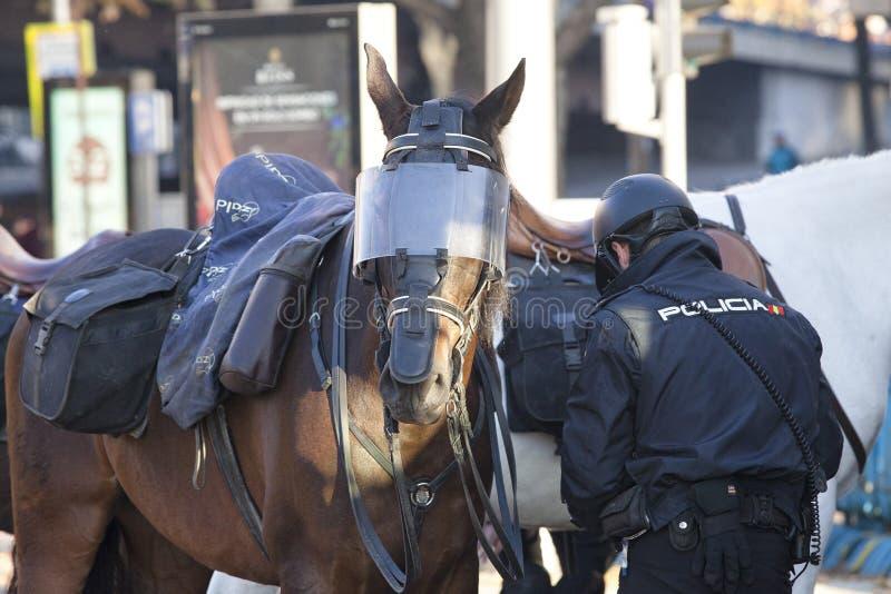 Policía montada que prepara el caballo para una intervención imagen de archivo