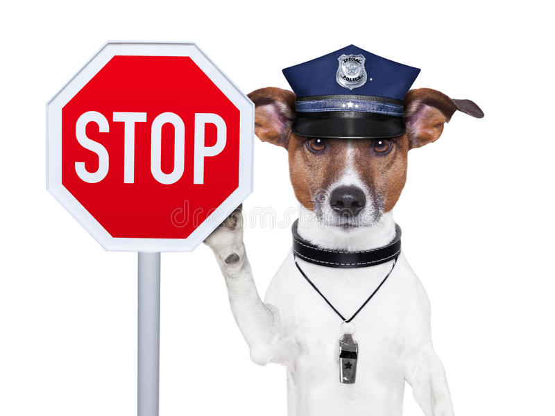 Police dog. With a street stop sign stock image