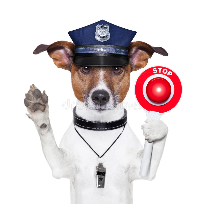 Police dog. With a street stop sign royalty free stock photo