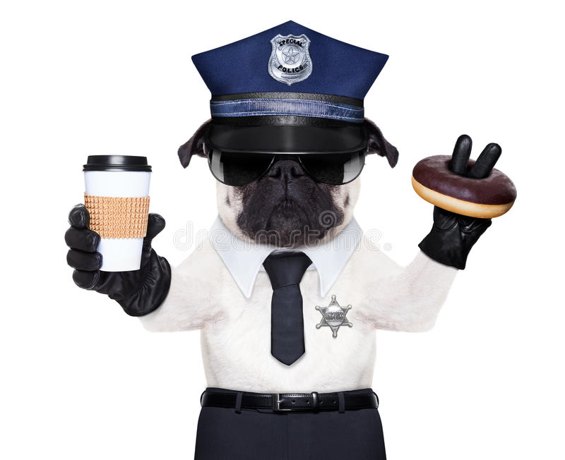 POLICE DOG. ON DUTY WITH coffee to go and a donut or Doughnut royalty free stock photo
