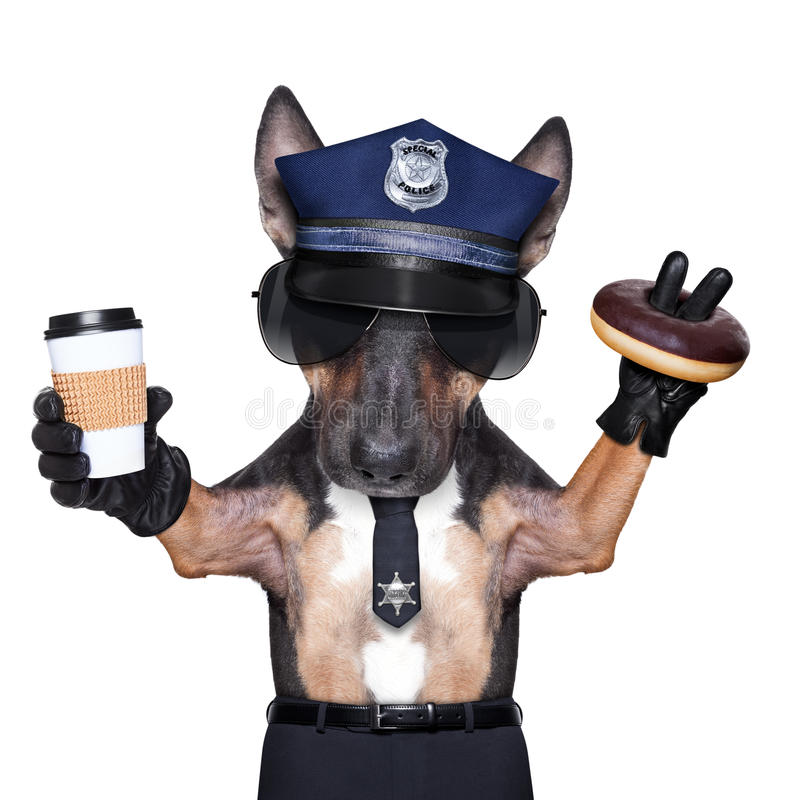 Police dog. ON DUTY WITH coffee to go and a donut or Doughnut, isolated on white blank background stock photo