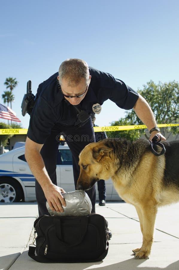 Police Dog Sniffing Bag stock photos