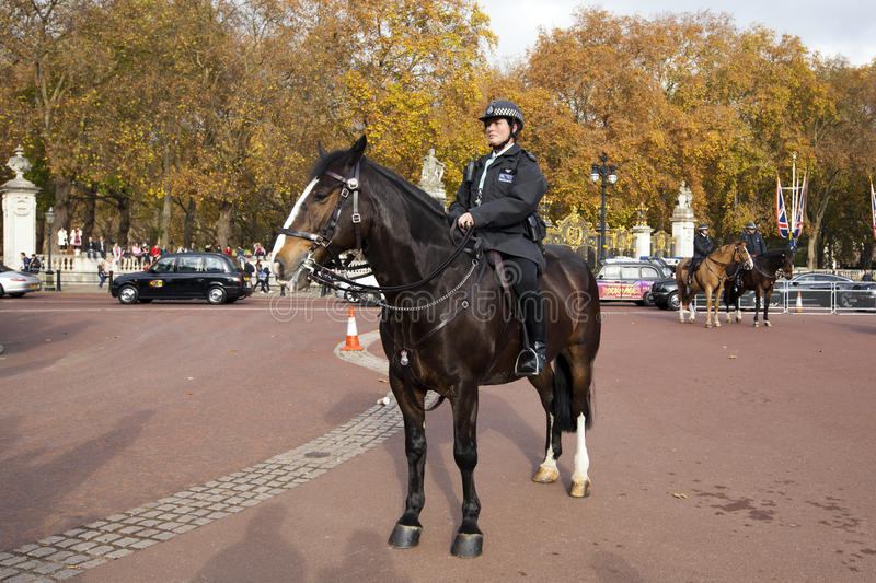 Download Police officer editorial stock image. Image of buckingham - 23221769