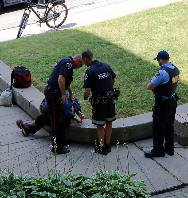 Police officers handcuff man in Kitchener, Ontario, Canada. Man arrested in the park on July 25, 2018 at approximately 1:30 p.m. at the corner of Duke and stock image