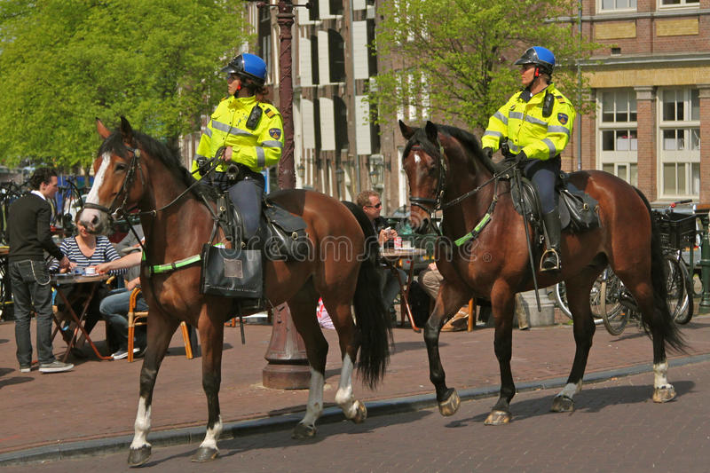 Police sur le cheval images stock