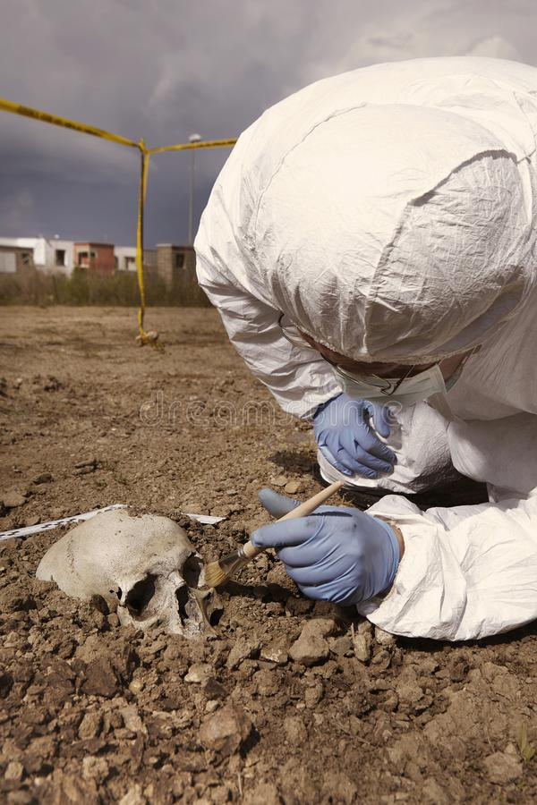Police at work - human skull uncovering on plain construction yard during work stock photo