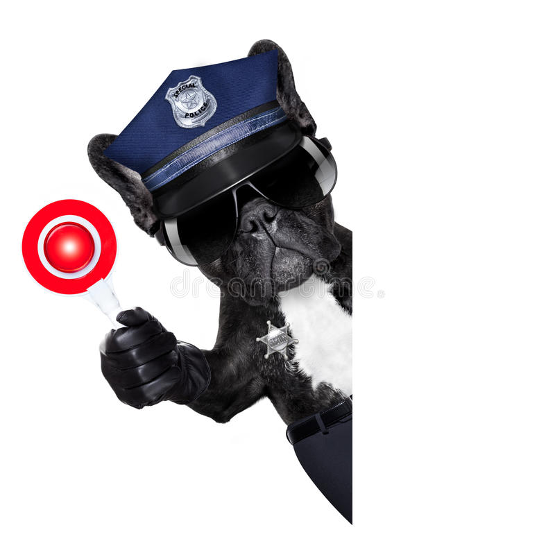 Policeman dog with stop sign royalty free stock photo