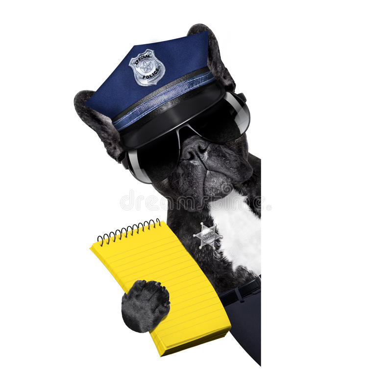 Policeman dog with ticket fine royalty free stock photo