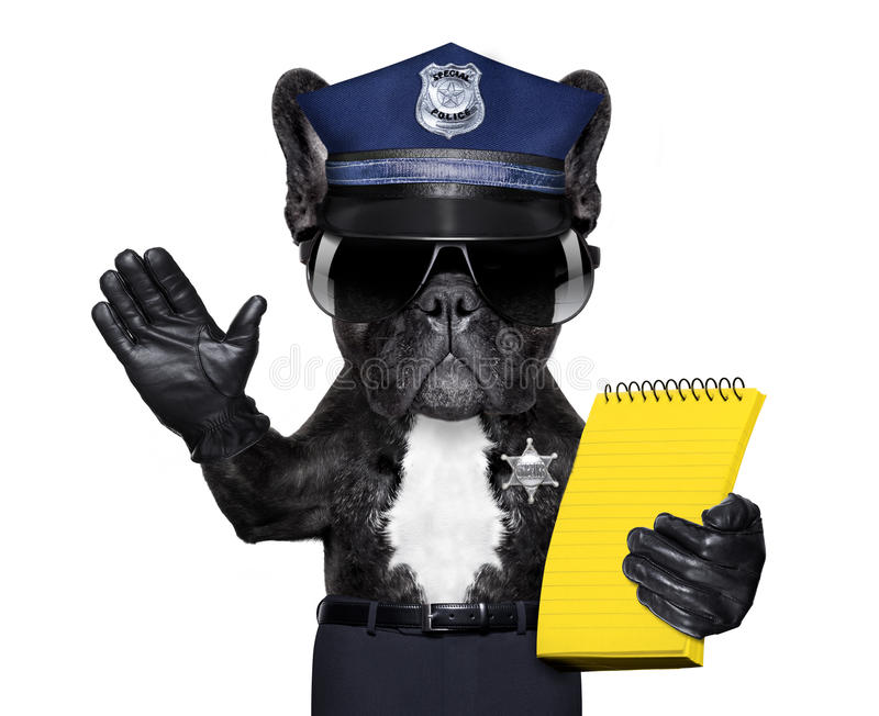 Policeman dog with ticket fine royalty free stock image