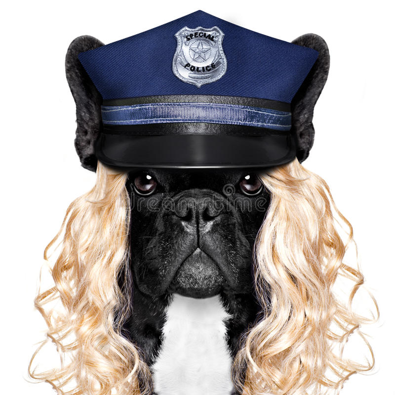 Policeman or policewoman with dog royalty free stock images