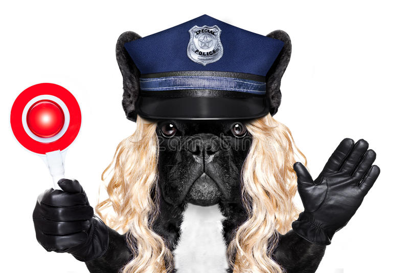 Policeman or policewoman with dog with stop sign royalty free stock photography
