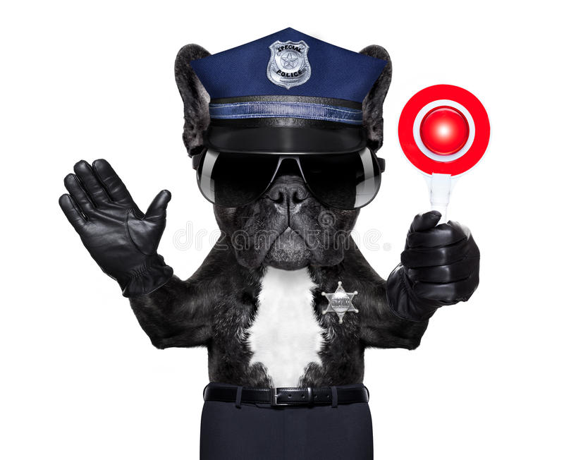 Policeman with stop sign. POLICE DOG ON DUTY WITH stop sign and hand , isolated on white blank background stock photography