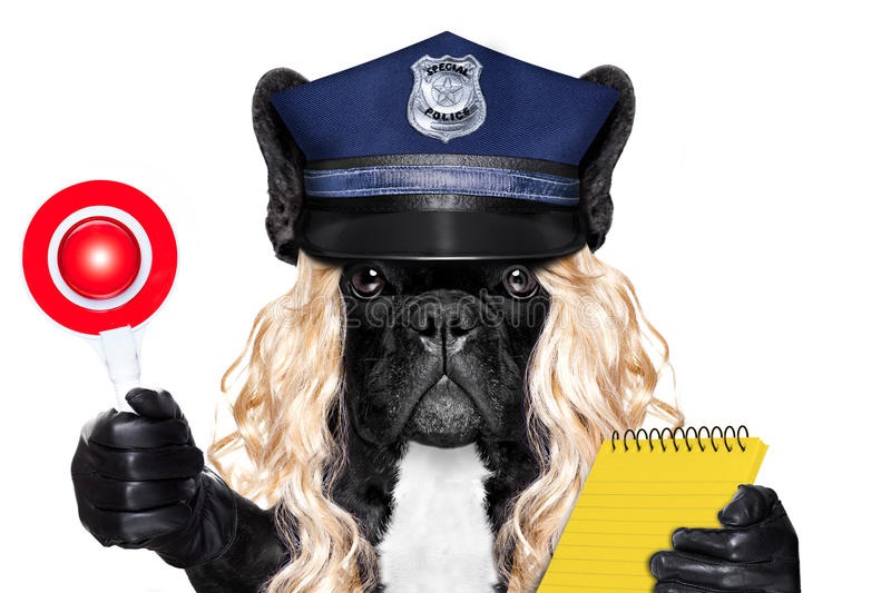 Policewoman dog with ticket fine royalty free stock photography