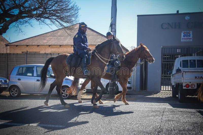 Policiers sur le cheval photo stock