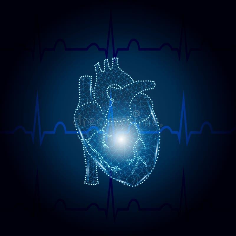 Poligono umano del cuore sul blu 2 di ECG royalty illustrazione gratis