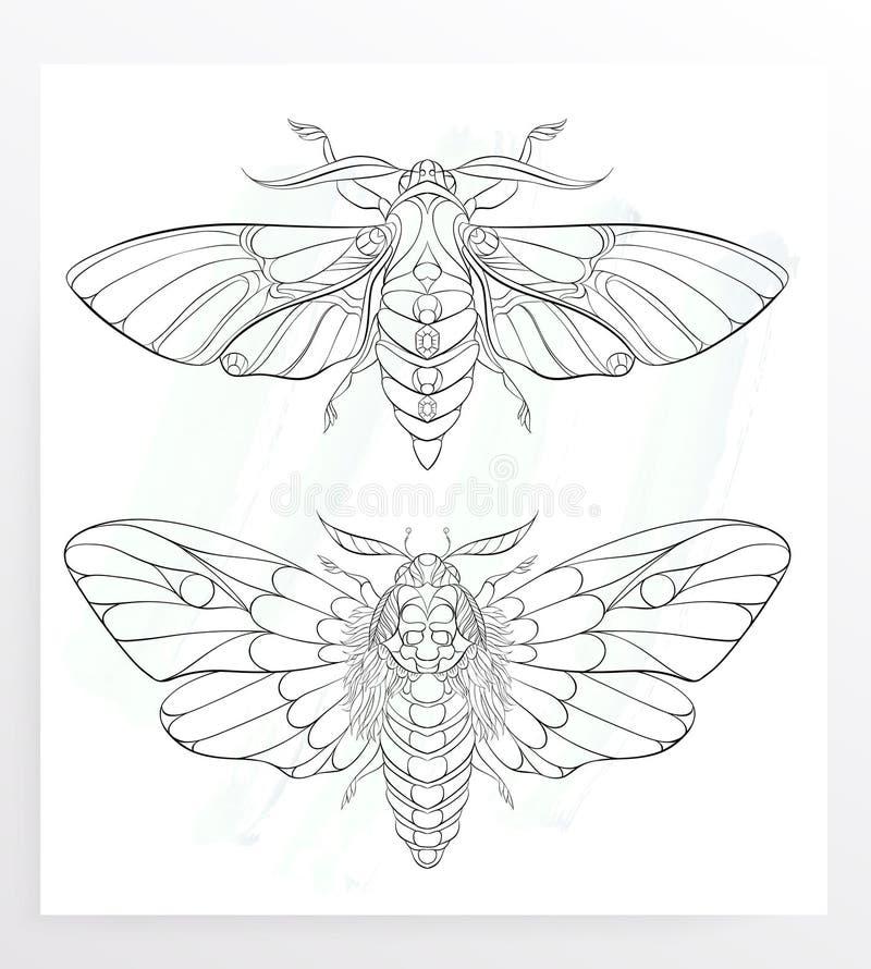 Polilla modelada en el fondo del grunge Mariposa adornada stock de ilustración