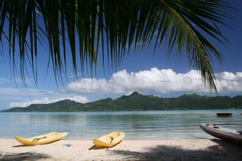 Polinesia imagem de stock