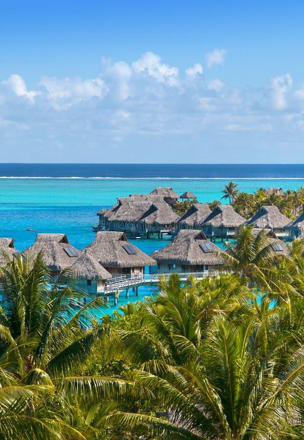 Polinesia Francesa Sobre los bungalows acuáticos y las palmeras imagenes de archivo