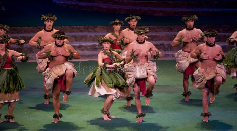 Polinesiano hawaiano di ballo culturale concentrare fotografie stock libere da diritti