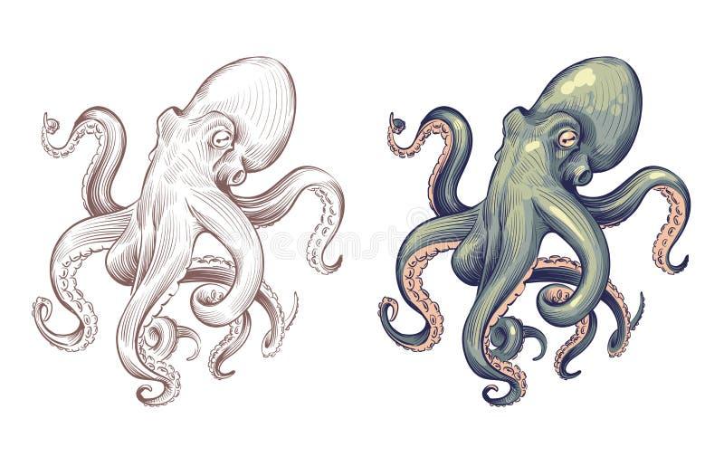 polipo Calamaro dell'animale di mare dei frutti di mare con il fumetto di tentacoli e lo stile disegnato a mano Insieme di vettor royalty illustrazione gratis