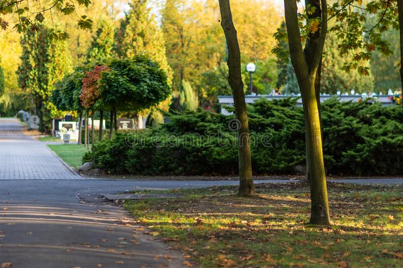 Polish cemetary before All Saints Day. stock photos
