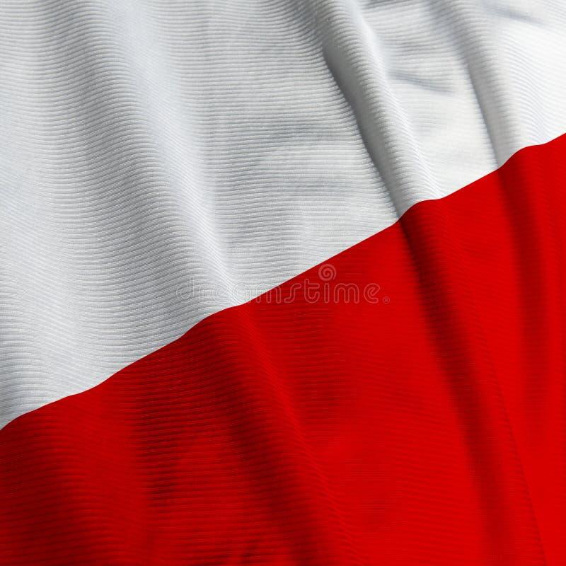 Download Polish Flag Closeup Stock Photo - Image: 4228990