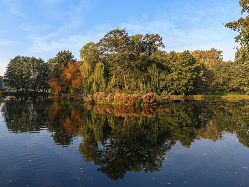 Polish golden autumn stock image