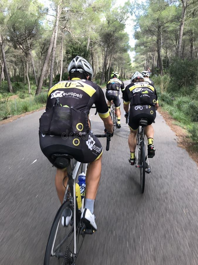 Polish cycling team training in Mallorca stock photos