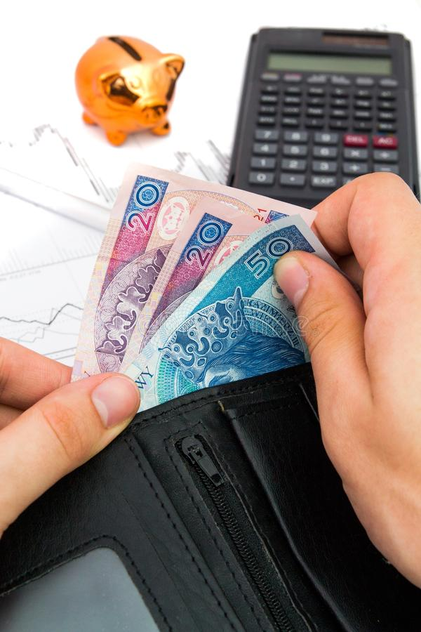 Polish notes in wallet. Financial and revenue composition royalty free stock photography