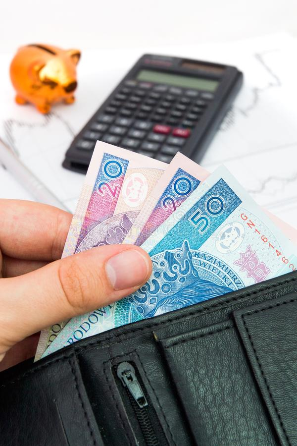 Polish notes in wallet. Financial and revenue composition royalty free stock photo