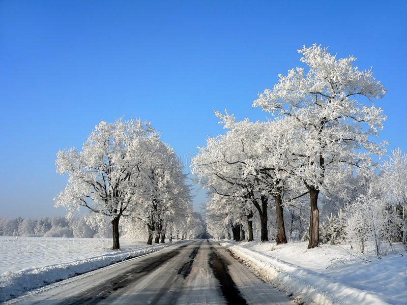 Polish winter landscape royalty free stock photography
