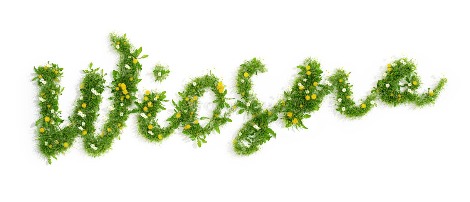 Polish word wiosna spring made of grass and flowers, 3D render. Polish word wiosna spring made of beautiful grass and flowers isolated on white background, 3D royalty free illustration