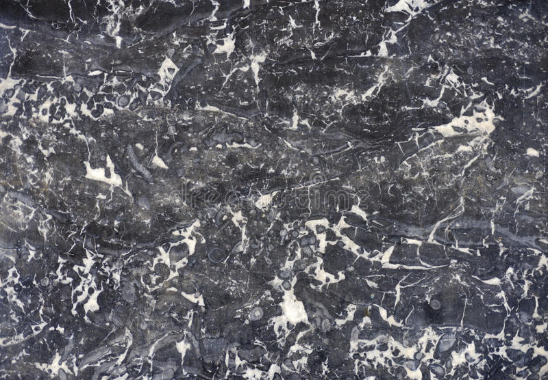 Download Polished marble texture stock photo. Image of material - 9924912