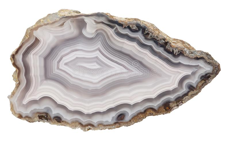 Agate specimen. Polished specimen of agate, isolated on a white background stock photos