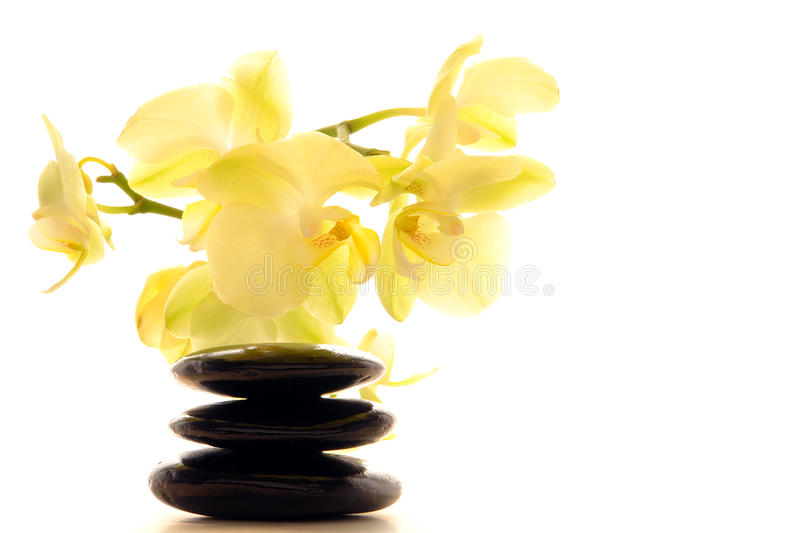 Polished Stones Zen Cairn and Orchid Flower stock image