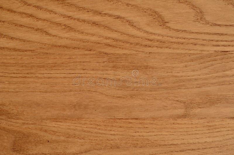 Polished wood texture. Natural wood grain royalty free stock photo