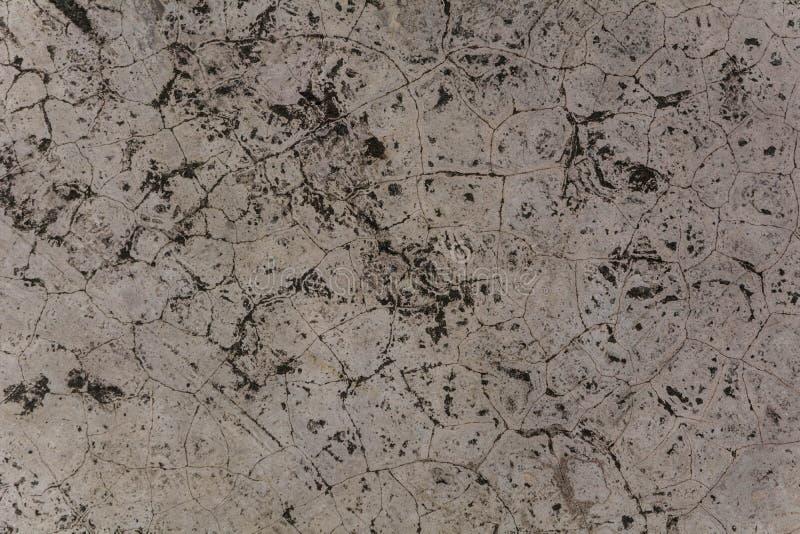 Polishing mortar is a natural pattern royalty free stock image