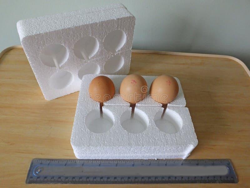 Polistyrenowi jajeczni pude?ka wysy?a? w opancerzanie systemu obrazy royalty free